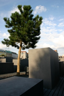 Urban nature - Berlin