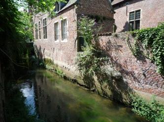 Urban nature - Leuven